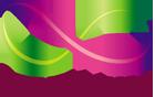 Skynet Micro Logo